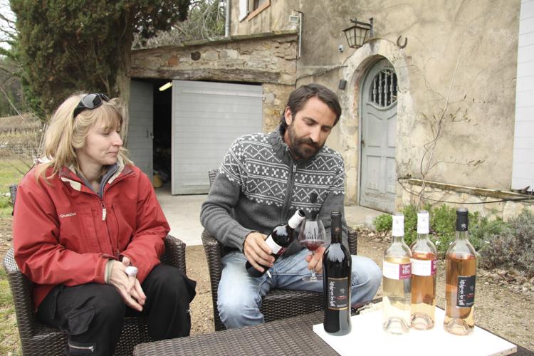 Domaine le Bois des Mademoiselles, organic wines