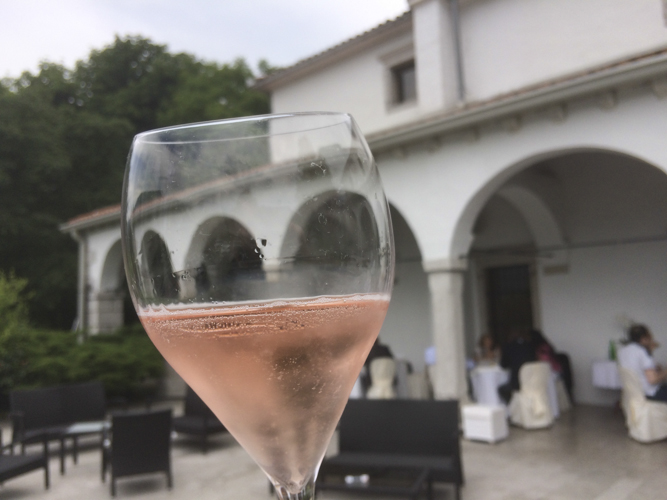 slovenia wine-10